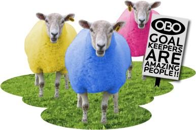 obo sheep